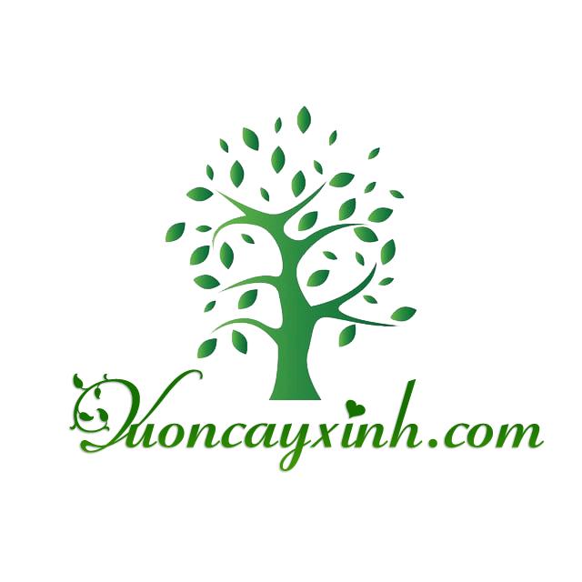 Logo thương hiệu vườn cây xinh