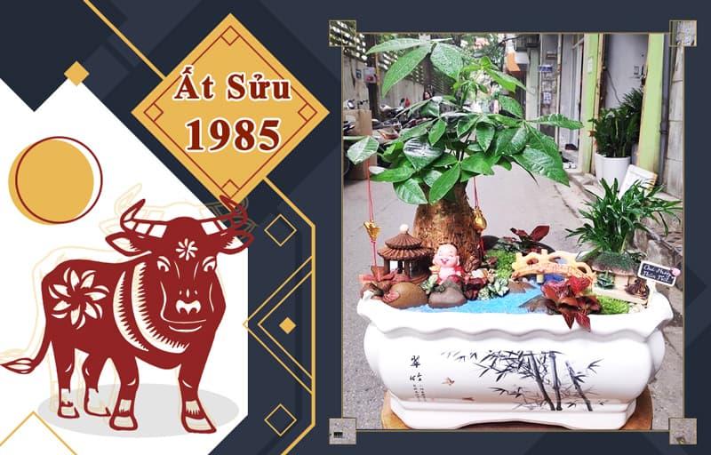 Tuổi Ất Sửu 1985 hợp cây gì? Vườn Cây Xinh