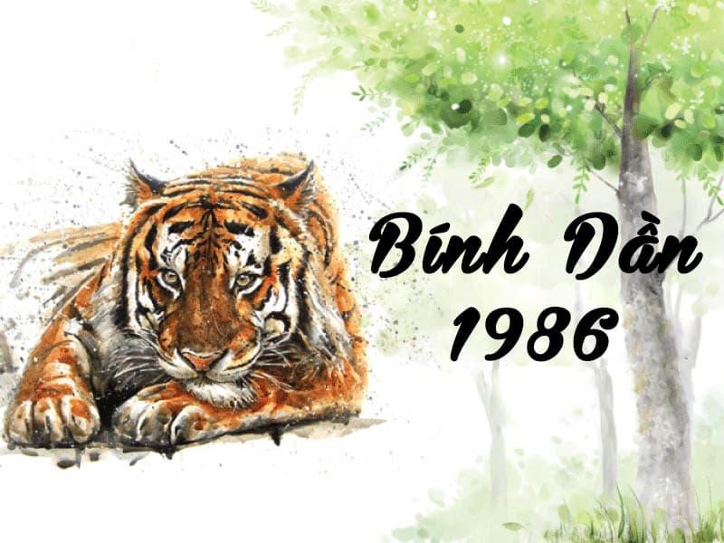 Tuổi Bính Dần 1986 hợp cây gì? Vườn Cây Xinh