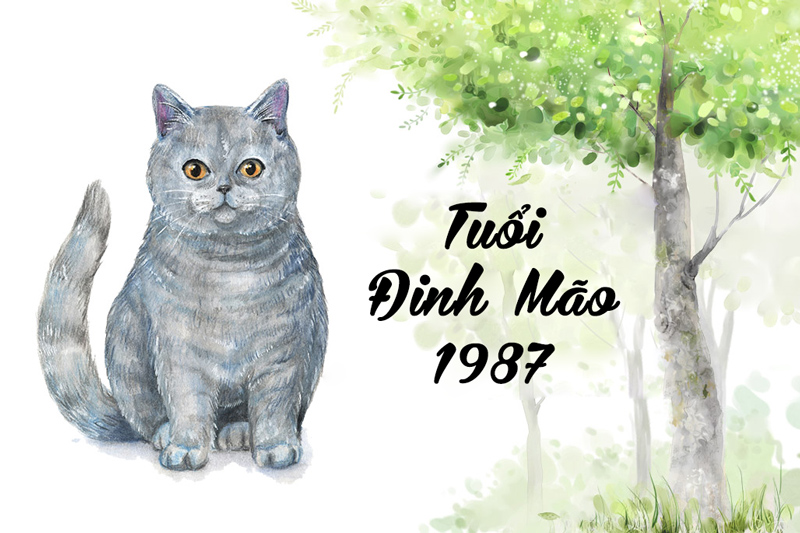 Tuổi Đinh Mão 1987 hợp cây gì? Vườn Cây Xinh