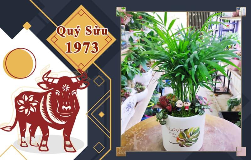Tuổi Quý Sửu 1973 hợp cây gì? Vườn Cây Xinh
